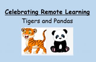 Look at this fantastic remote learning- Nursery